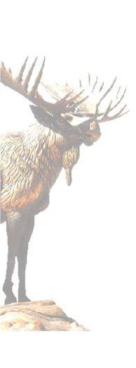 Moose International in Great Britain Association Group 3 ...